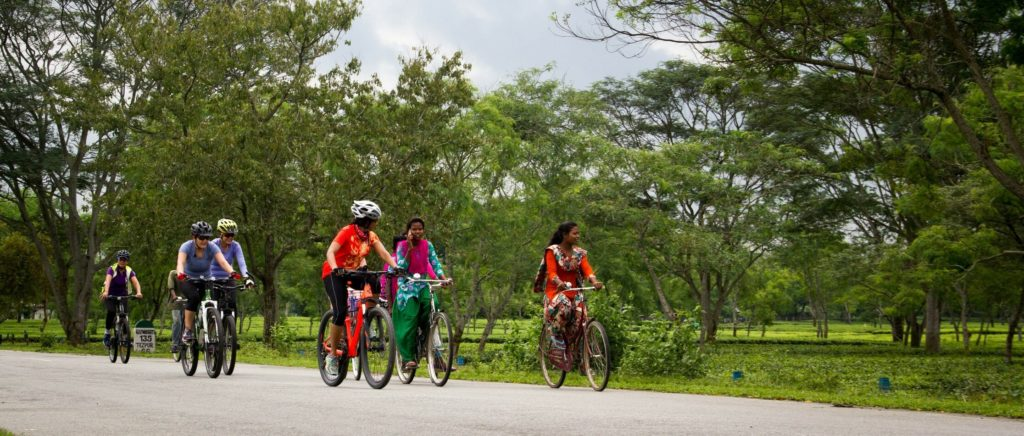 Tour de vélo au Parc National de Kaziranga